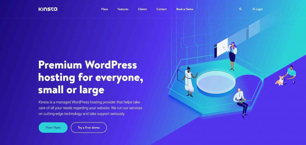 Kinsta - Managed wordpress hosting